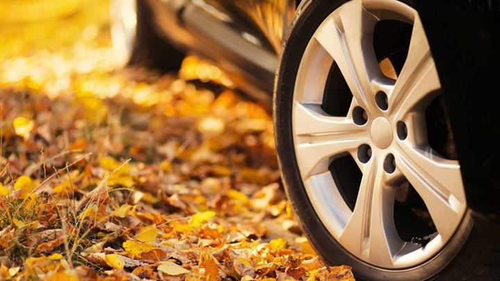 Co miało zlecieć, właściwie już spadło – chodzi o liście zalegające na ulicy i samochodach.…