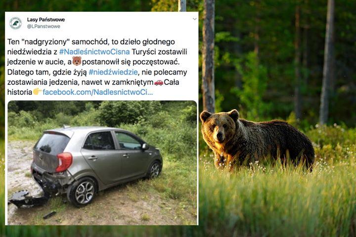 Nie zostawiajcie jedzenia w samochodzie⚠  Chyba, że chcecie zgłosić ubezpieczycielowi, że niedźwiedź…